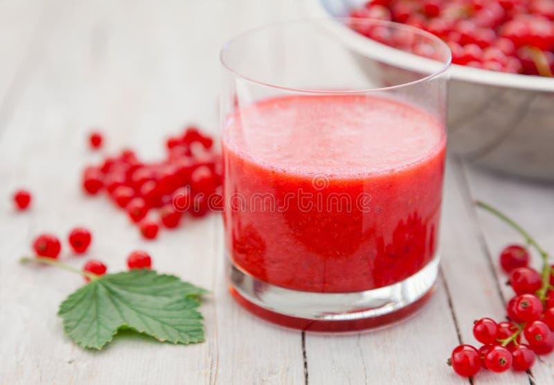 新鲜和健康红浆果圆滑的人 图库摄影