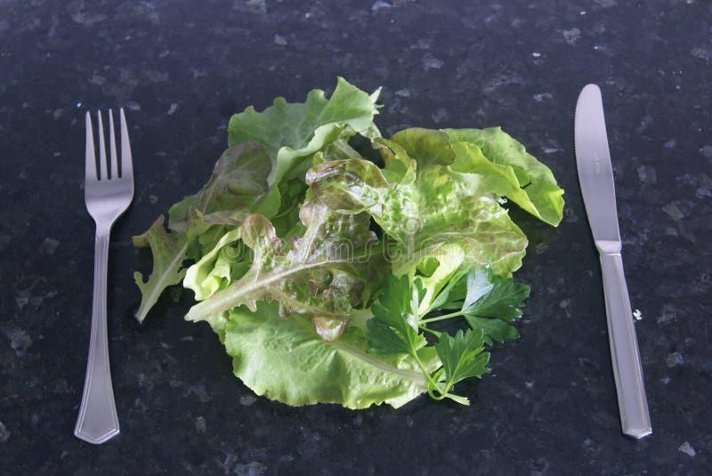 新鲜和健康绿色食物 免版税库存照片