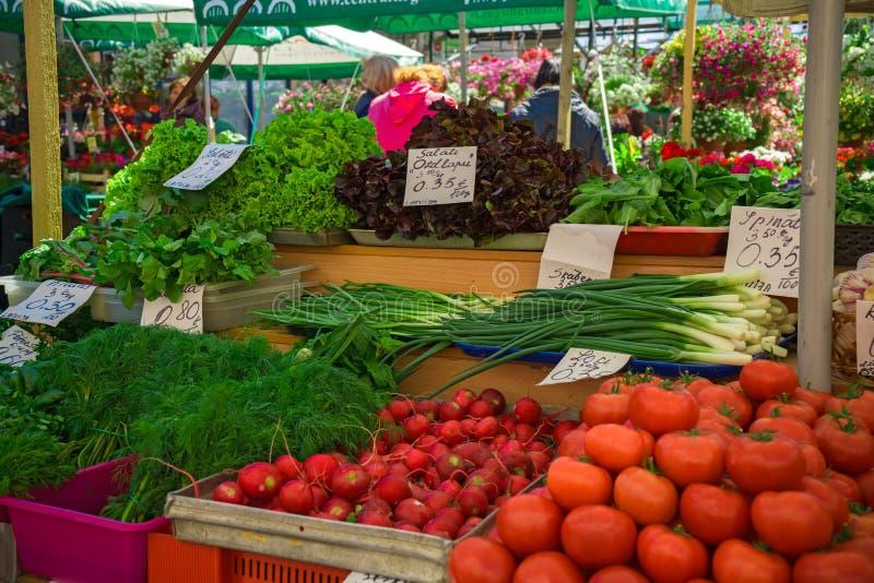 新鲜和有机蔬菜在农夫市场上:raddish,蕃茄,莳萝,沙拉,绿色onoins,莴苣,在价格标签的栗色 免版税库存照片