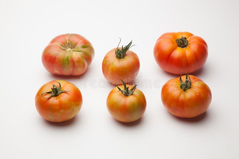 新鲜和有机蕃茄,从桌的庭院 库存照片