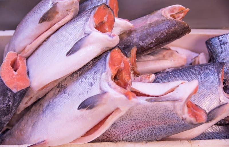 新鲜和美丽的鳟鱼鱼尸体准备好待售 库存图片