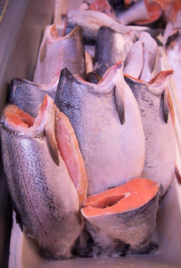 新鲜和美丽的鳟鱼鱼尸体准备好待售 图库摄影