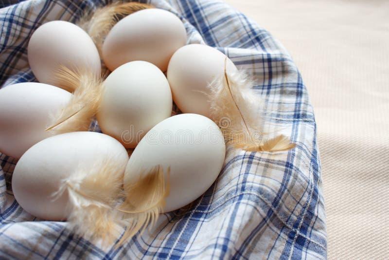 新鲜在格子花呢披肩织品的许多鸭子鸡蛋 免版税库存图片