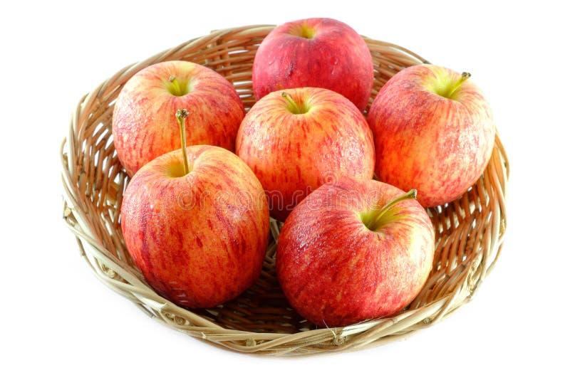 新鲜在白色背景隔绝的篮子的苹果 免版税库存照片