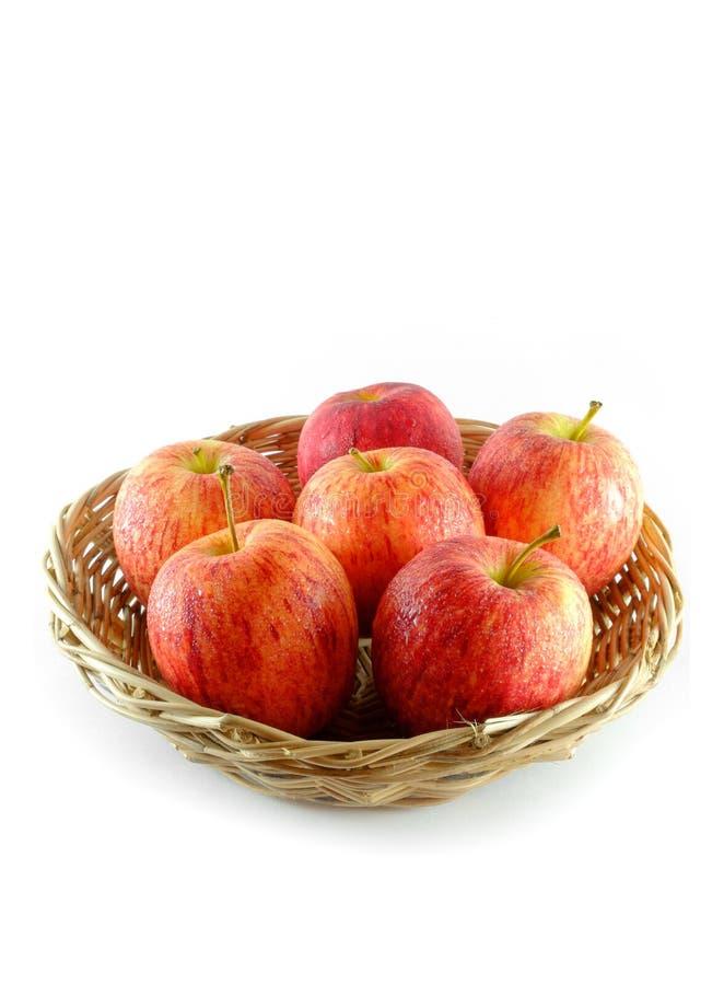新鲜在白色背景隔绝的篮子的苹果 库存图片
