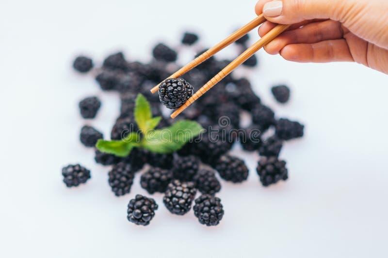 新鲜成熟balckberry用反对白色背景的薄菏 未知的人拿着筷子用新鲜的莓果 r ?? 免版税图库摄影