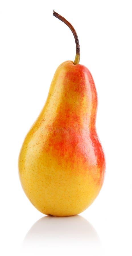新鲜水果查出唯一的梨 免版税库存照片