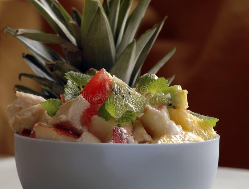 新鲜水果沙拉酸奶 库存照片