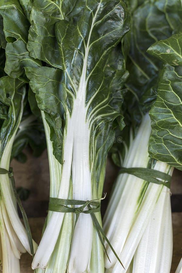 新鲜水果蔬菜 唐莴苣 库存图片