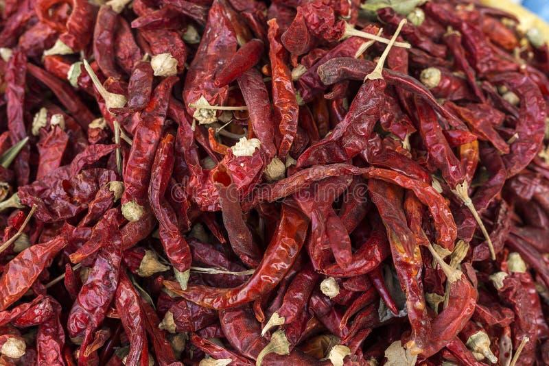 新鲜水果蔬菜 红色的辣椒 免版税库存照片
