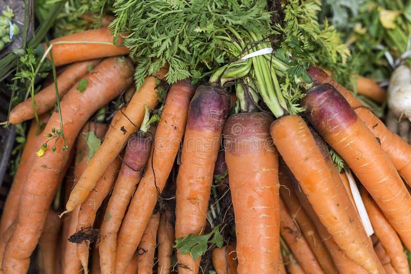 新鲜水果蔬菜 红萝卜 图库摄影