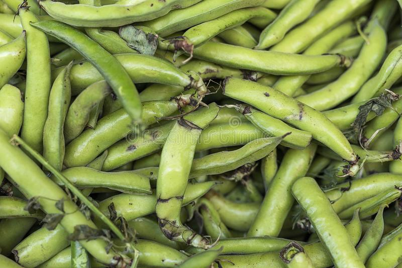 新鲜水果蔬菜 蚕豆 免版税图库摄影