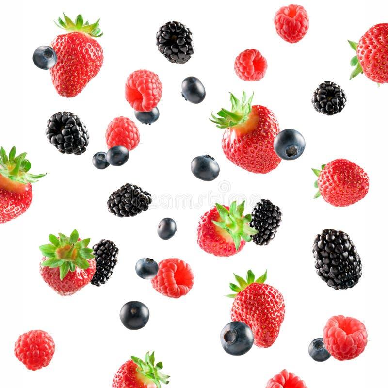 新鲜浆果的展开 免版税图库摄影