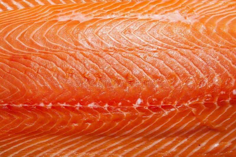 新鲜的三文鱼内圆角 免版税库存图片