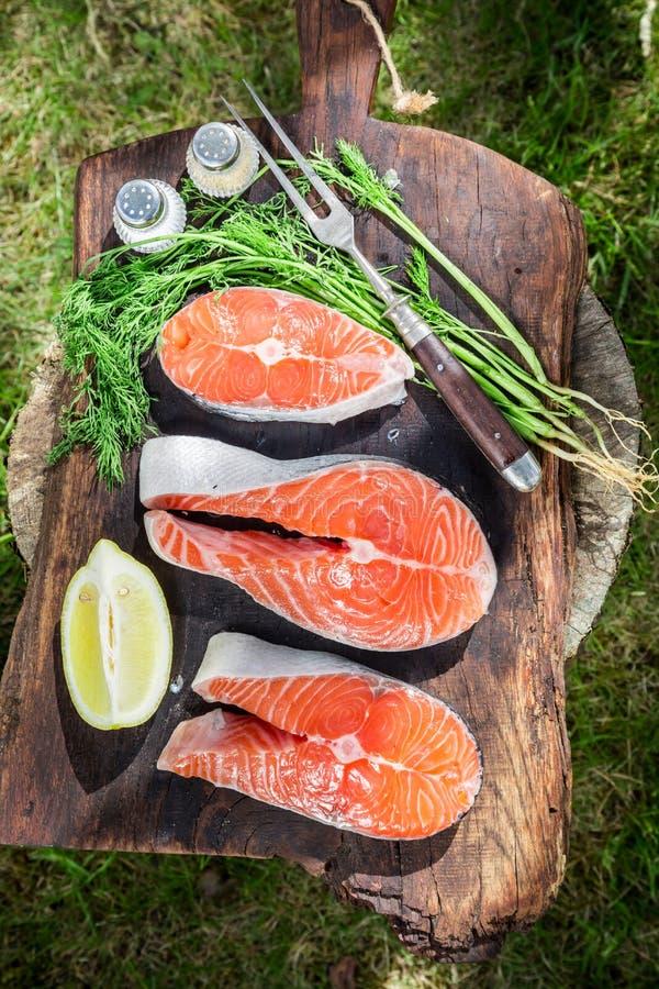 新鲜的三文鱼用柠檬和莳萝烤的 免版税图库摄影