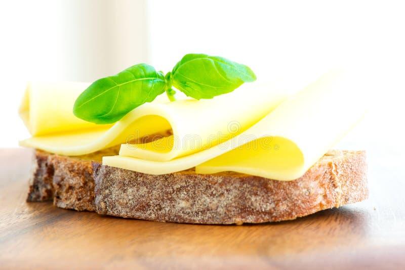 在高钥匙的三明治用乳酪蕃茄和蓬蒿 免版税库存图片