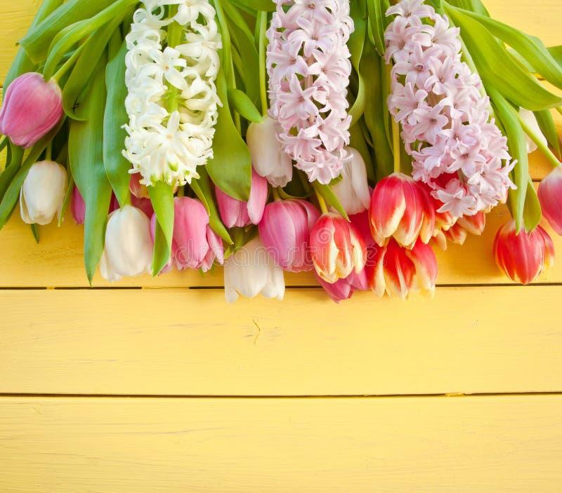 新鲜的五颜六色的春天花 库存图片