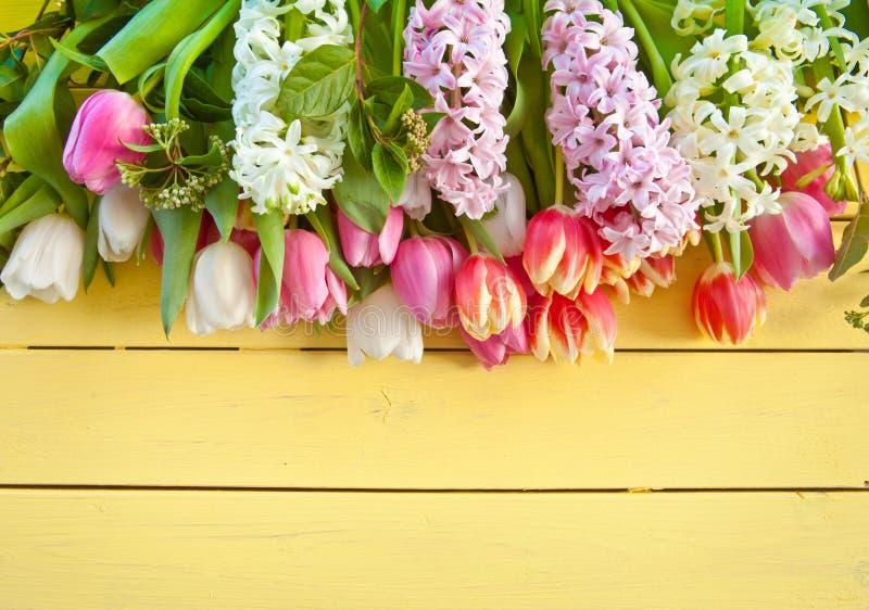 新鲜的五颜六色的春天花 免版税库存图片