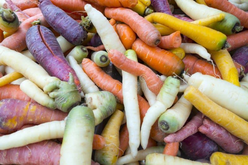 新鲜的五颜六色的红萝卜在市场上 免版税库存图片