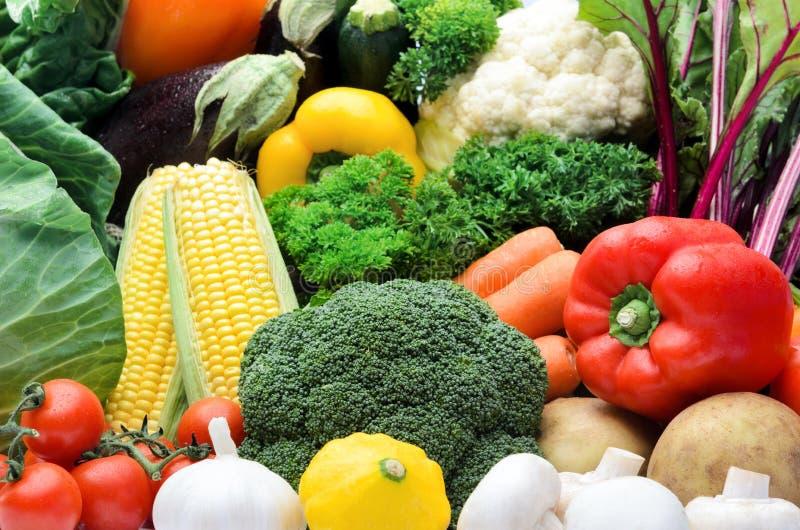 新鲜的五颜六色的菜品种  图库摄影