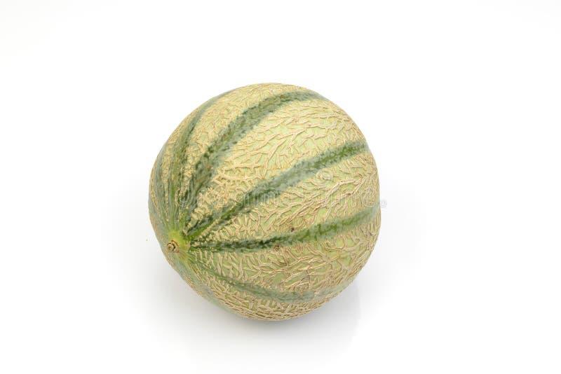 新鲜的人为甜瓜瓜 免版税库存照片