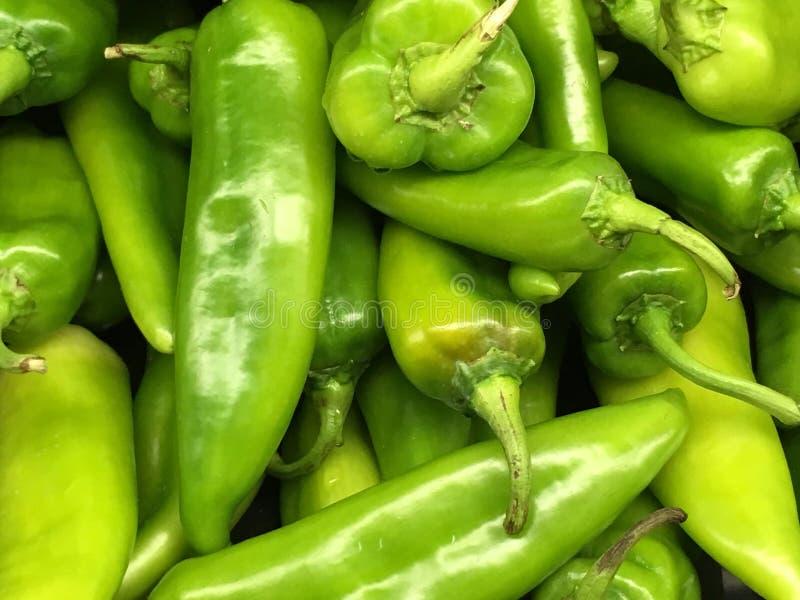 新鲜的农厂采撷绿色辣椒 免版税库存图片