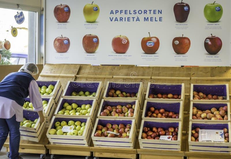 新鲜的农夫苹果梅林达在地方室外市场上 马莱娜,1995年出生,是一个第一和苹果co多数名牌  图库摄影