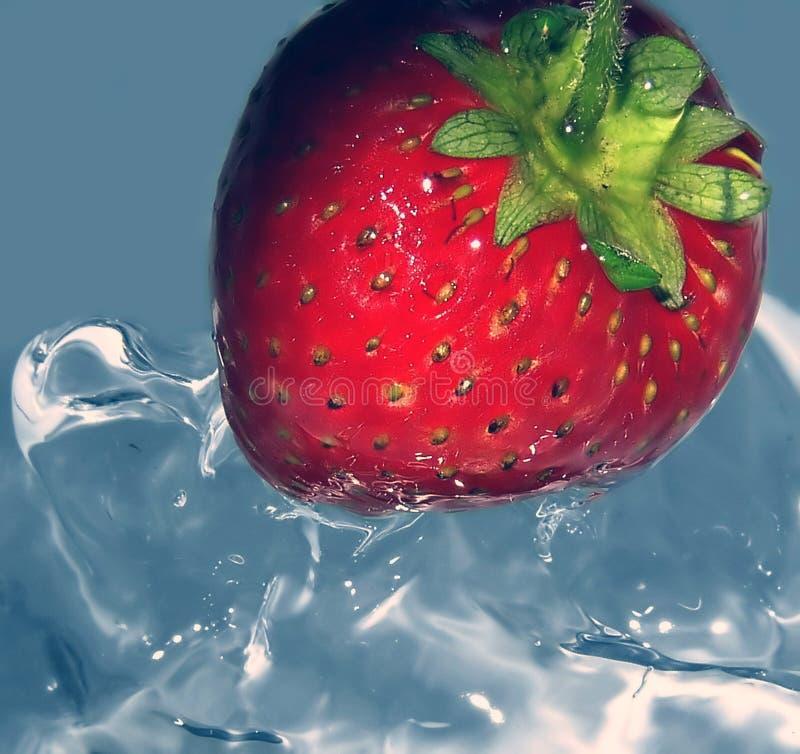 新鲜的冰冷的草莓 库存图片