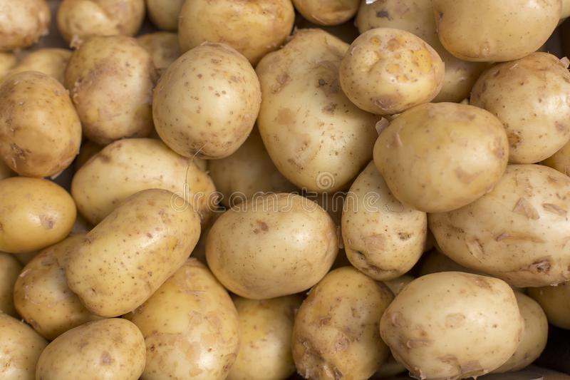 新鲜的土豆摘要果子五颜六色的样式纹理背景 库存图片