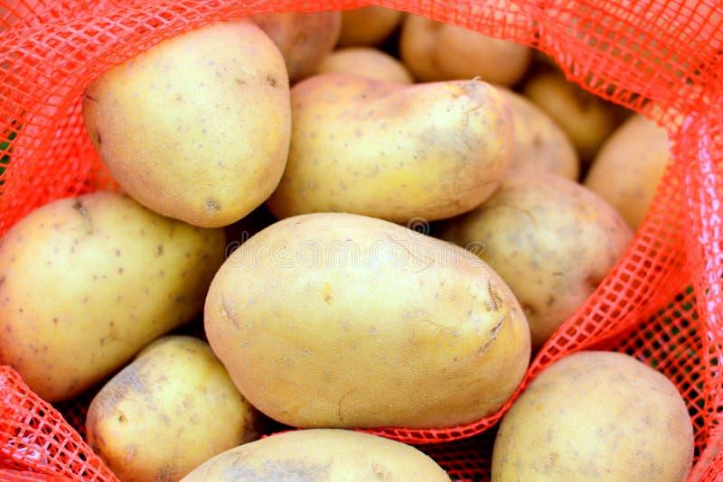 新鲜的土豆 库存图片