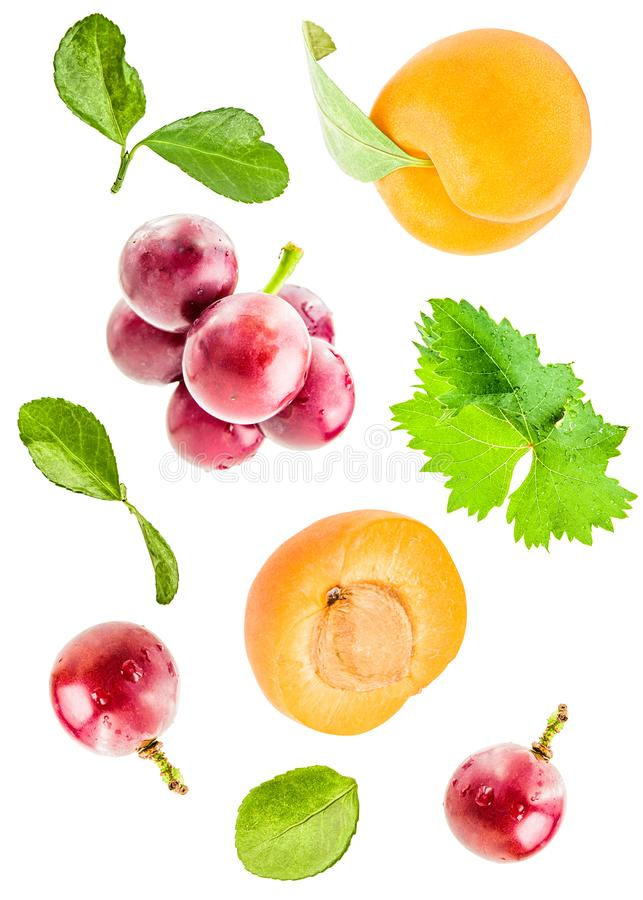 新鲜的在白色背景与叶子落隔绝的杏子和葡萄 库存照片