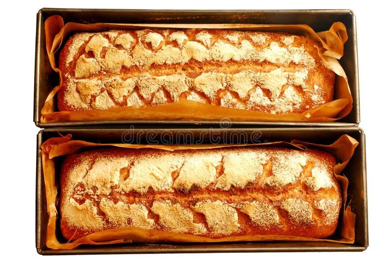 新鲜的在白色背景隔绝的发酵母家制面包 库存照片