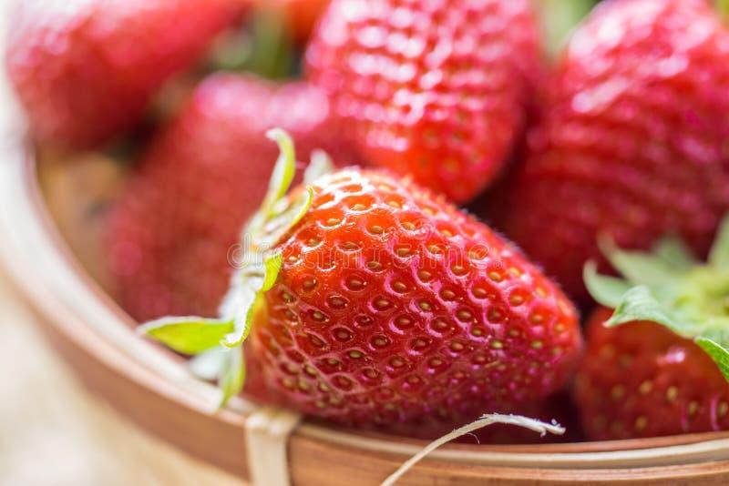 新鲜的在篮子特写镜头的莓果成熟草莓 免版税图库摄影