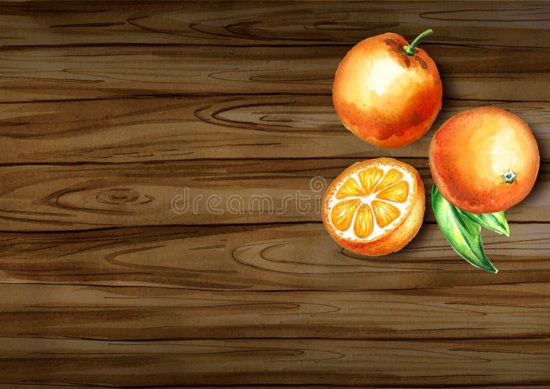 新鲜的在边界的桔子顶视图 食物自然有机 水彩手拉的背景 库存照片