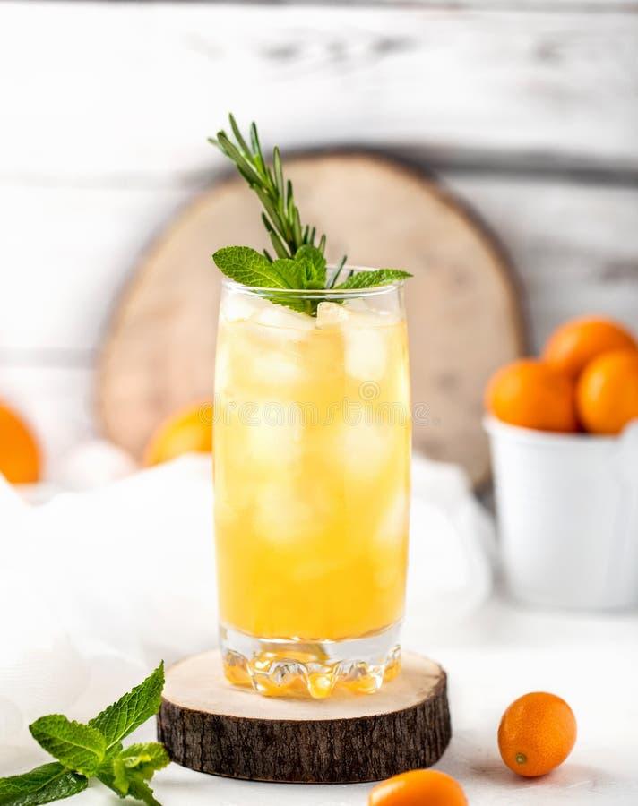新鲜的夏天鸡尾酒用橙汁和冰块 杯在白色背景的桔子汽水饮料 库存图片