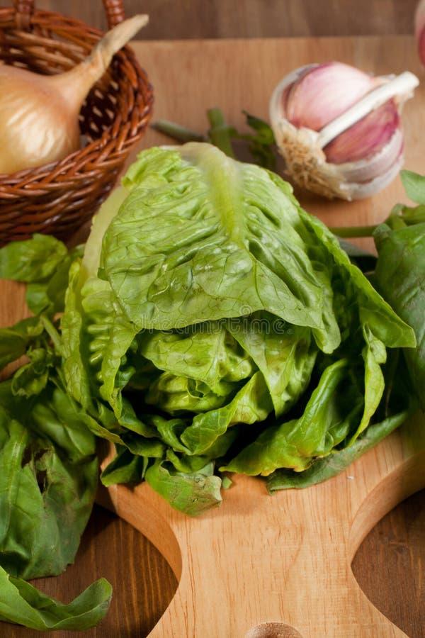 新鲜的大蒜葱沙拉 免版税图库摄影