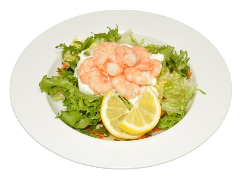新鲜的大虾沙拉 图库摄影