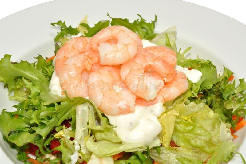 新鲜的大虾沙拉 免版税库存图片