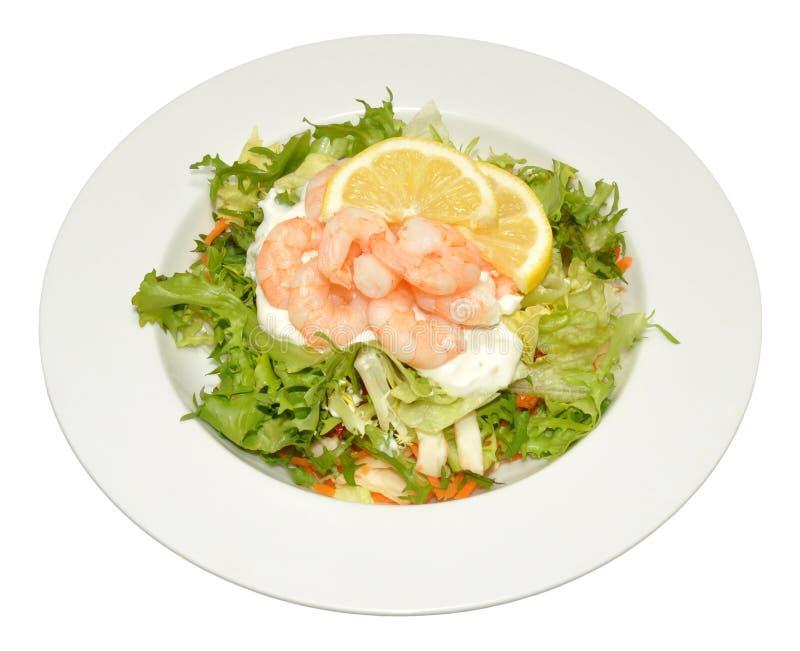 新鲜的大虾沙拉 库存照片