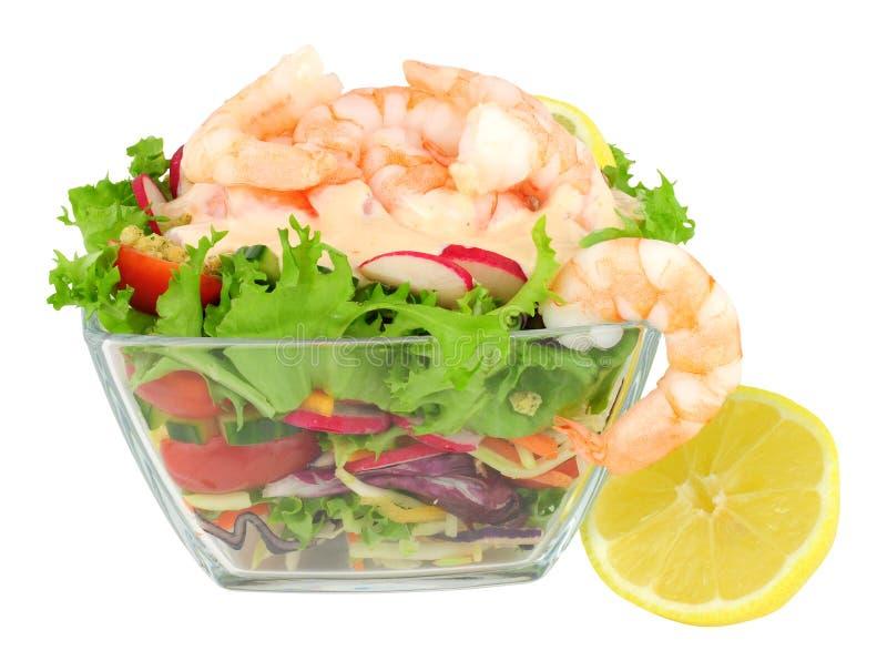 新鲜的大虾沙拉 库存图片