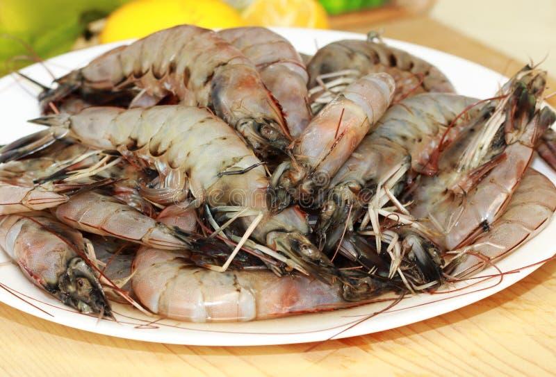 新鲜的大虾 免版税库存图片