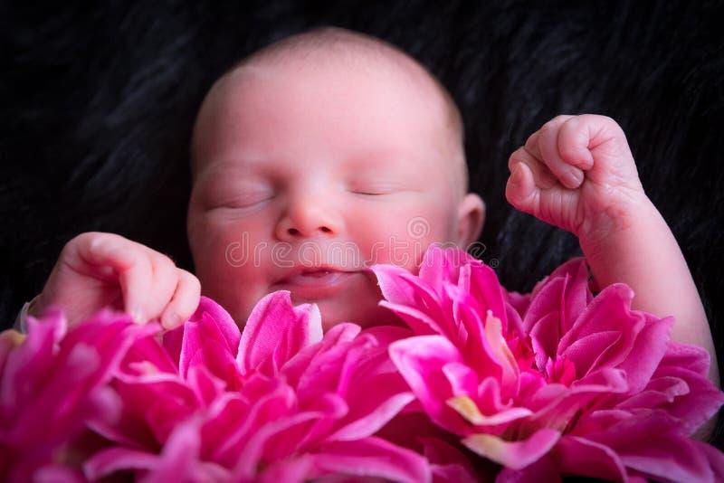 新鲜的婴孩 免版税库存照片
