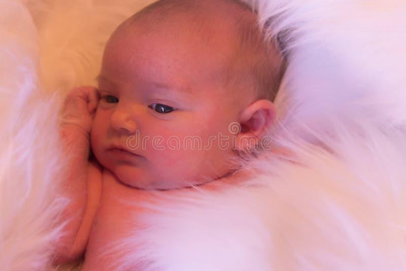 新鲜的婴孩 免版税库存图片