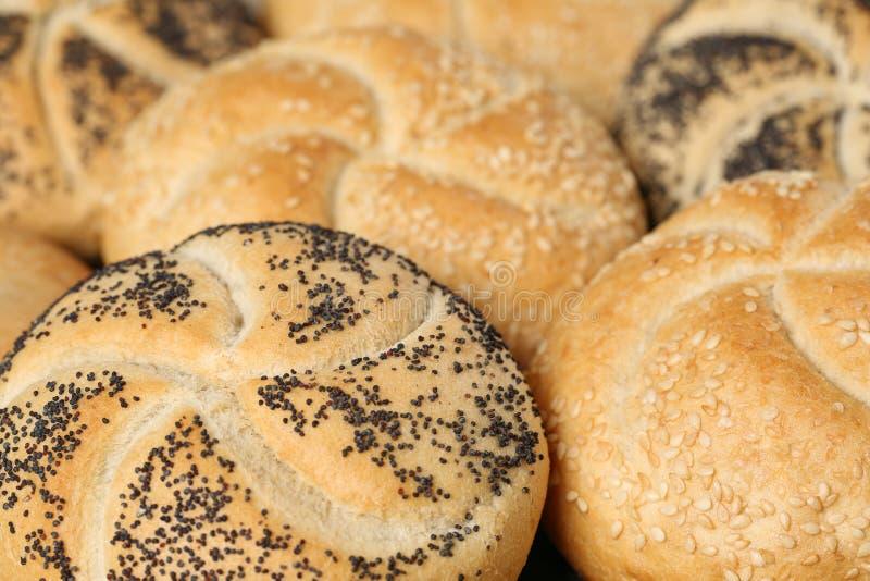 新鲜的德国小圆面包 免版税库存图片