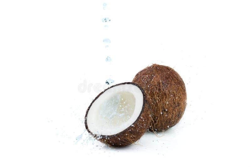 新鲜的成熟热带椰子用在白色隔绝的水 免版税库存图片