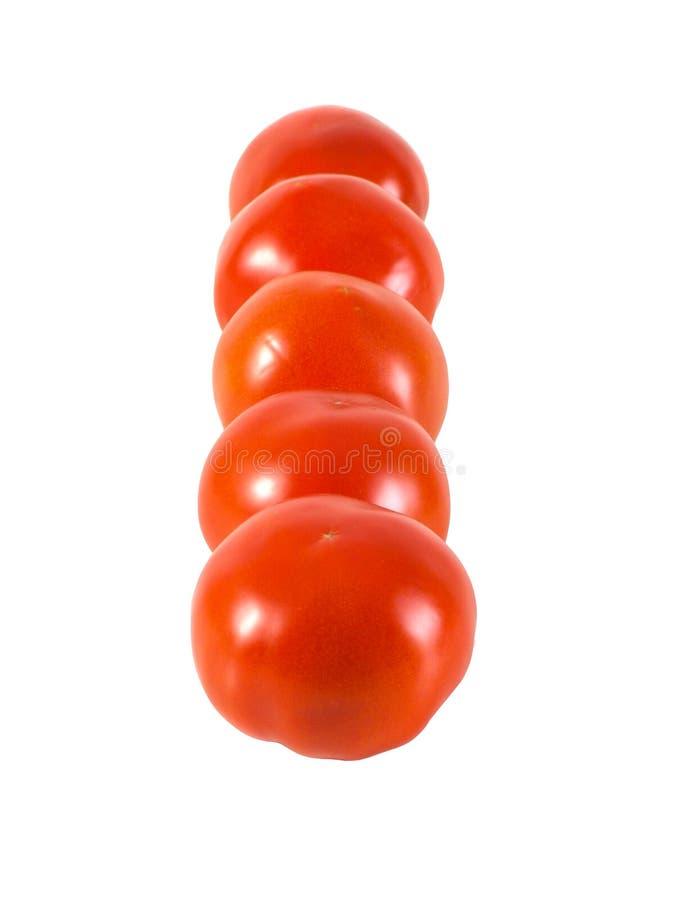 新鲜的成熟的捆蕃茄,隔绝在白色背景 免版税库存照片
