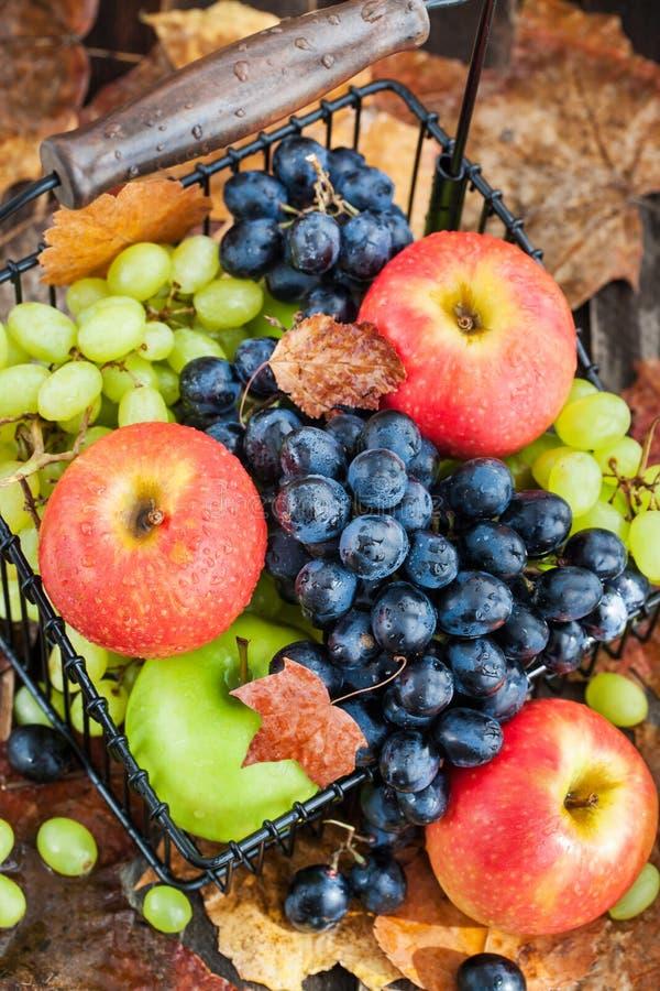 新鲜的成熟秋天苹果和葡萄 免版税图库摄影