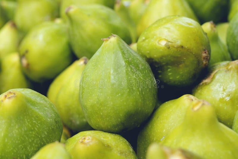 新鲜的成熟绿色无花果 r 库存照片