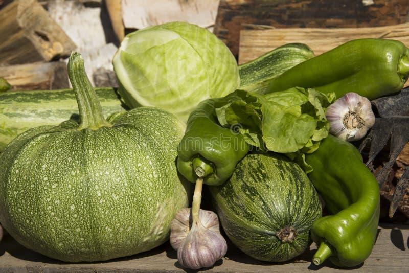 新鲜的成熟蔬菜 免版税库存图片
