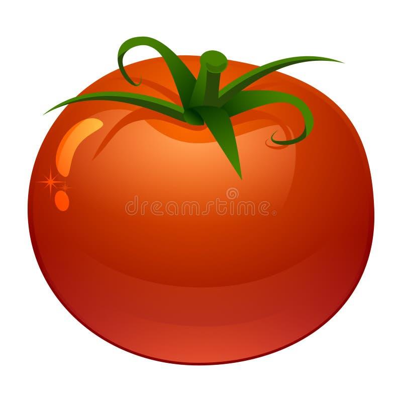 新鲜的成熟蕃茄的风格化传染媒介例证 库存例证
